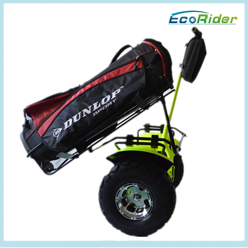 2 Wheel Self Balancing Smart Electric Scooter with Golf Bag Carrier